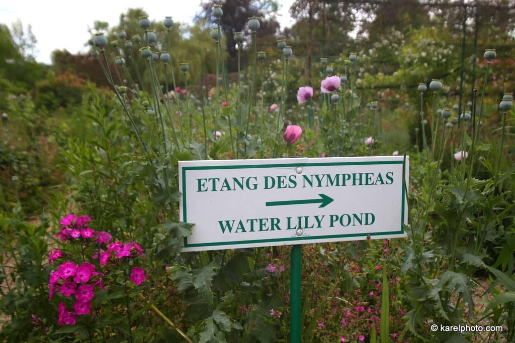 Jardin des Nymphéas